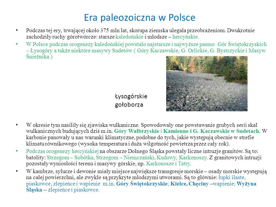 Era paleozoiczna w Polsce