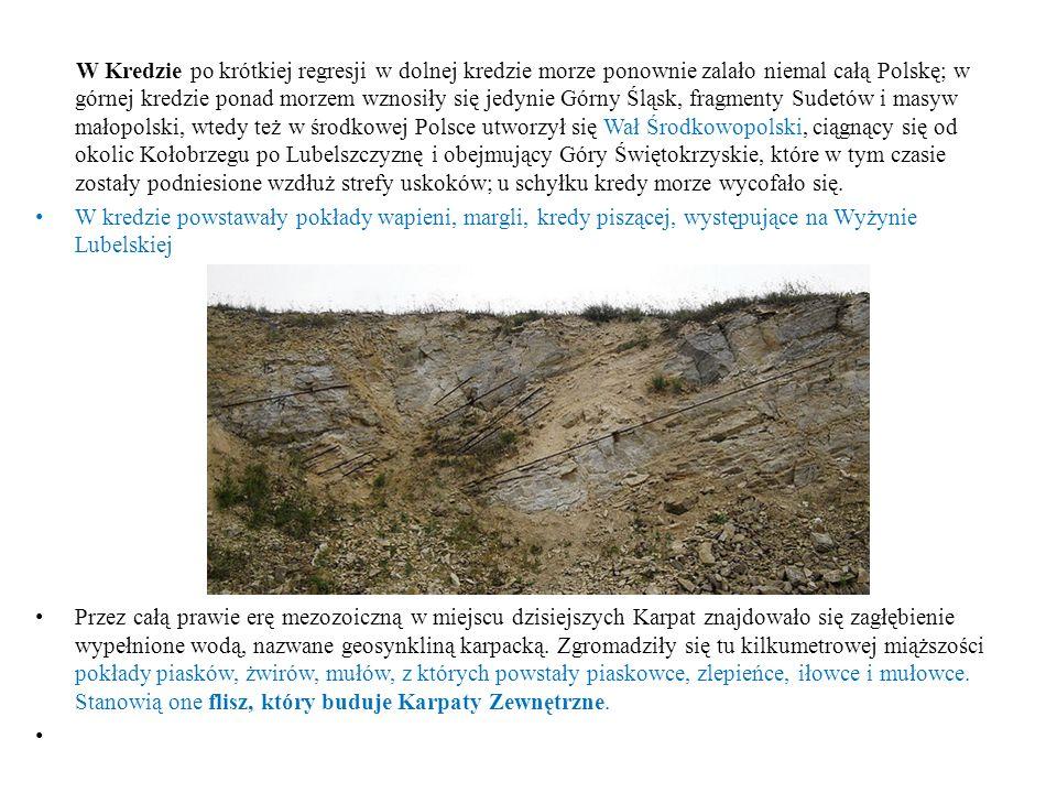 W Kredzie po krótkiej regresji w dolnej kredzie morze ponownie zalało niemal całą Polskę; w górnej kredzie ponad morzem wznosiły się jedynie Górny Śląsk, fragmenty Sudetów i masyw małopolski, wtedy też w środkowej Polsce utworzył się Wał Środkowopolski, ciągnący się od okolic Kołobrzegu po Lubelszczyznę i obejmujący Góry Świętokrzyskie, które w tym czasie zostały podniesione wzdłuż strefy uskoków; u schyłku kredy morze wycofało się.