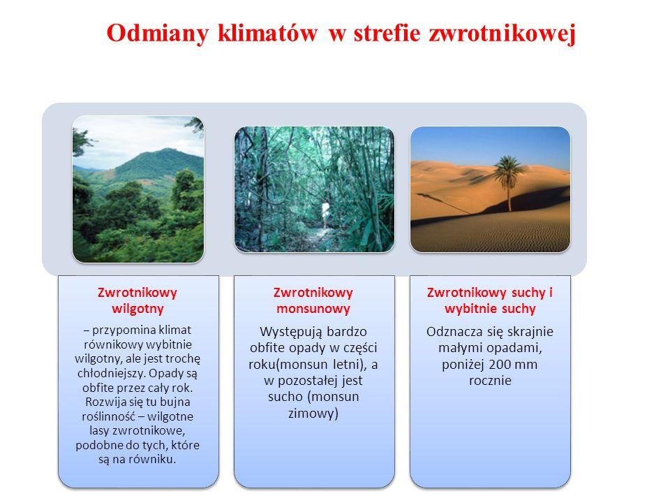 Odmiany klimatów w strefie zwrotnikowej