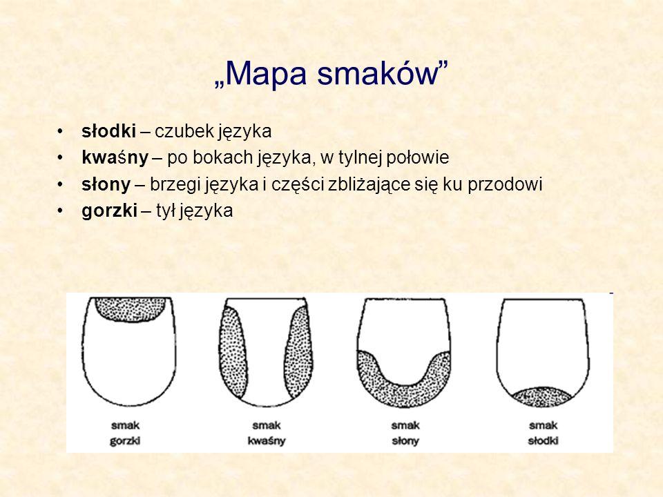 """""""Mapa smaków słodki – czubek języka"""