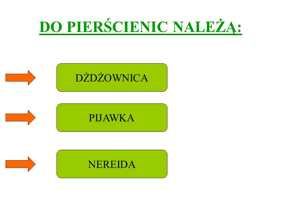 DO PIERŚCIENIC NALEŻĄ: