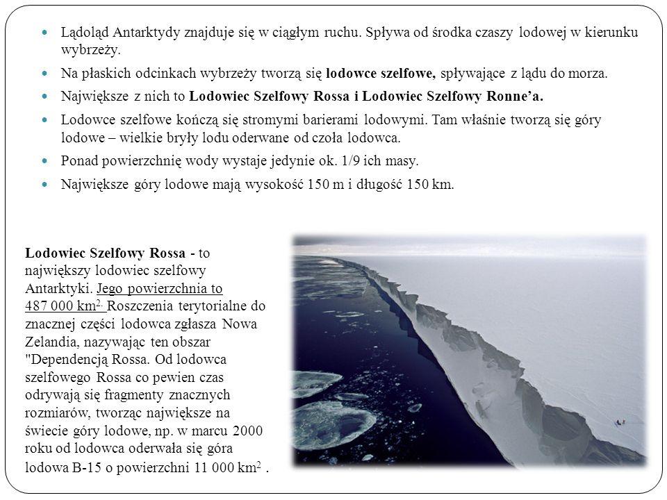 Lądoląd Antarktydy znajduje się w ciągłym ruchu