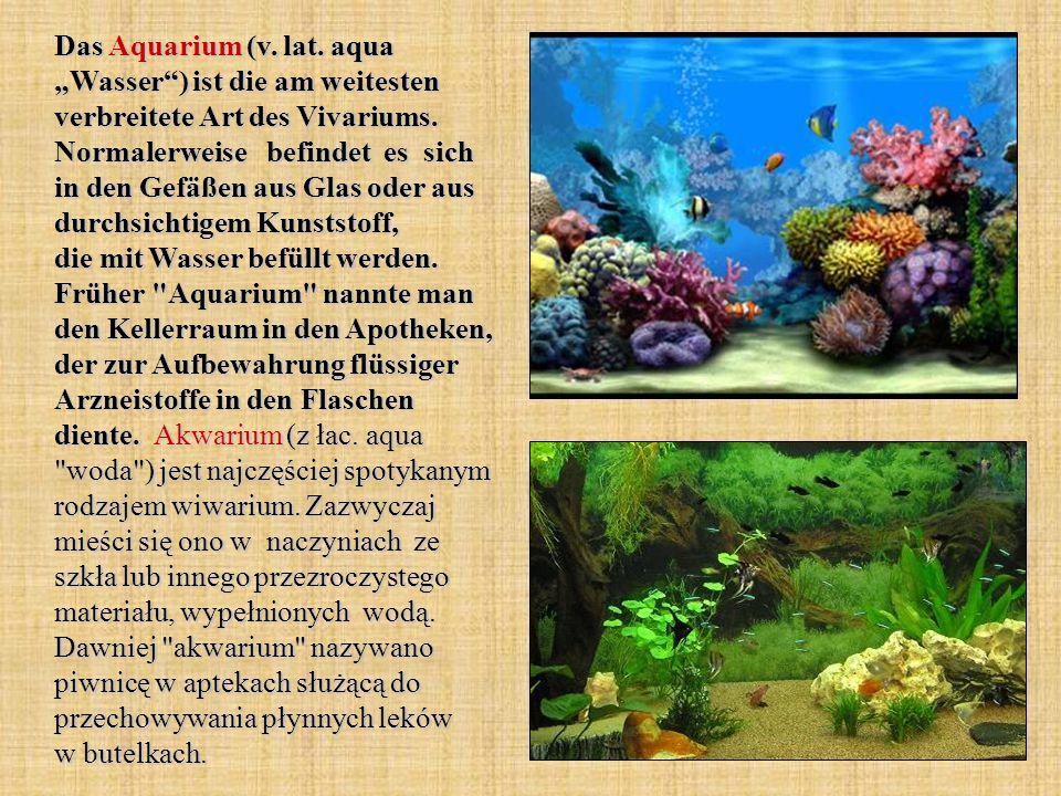 """Das Aquarium (v. lat. aqua """"Wasser ) ist die am weitesten verbreitete Art des Vivariums."""