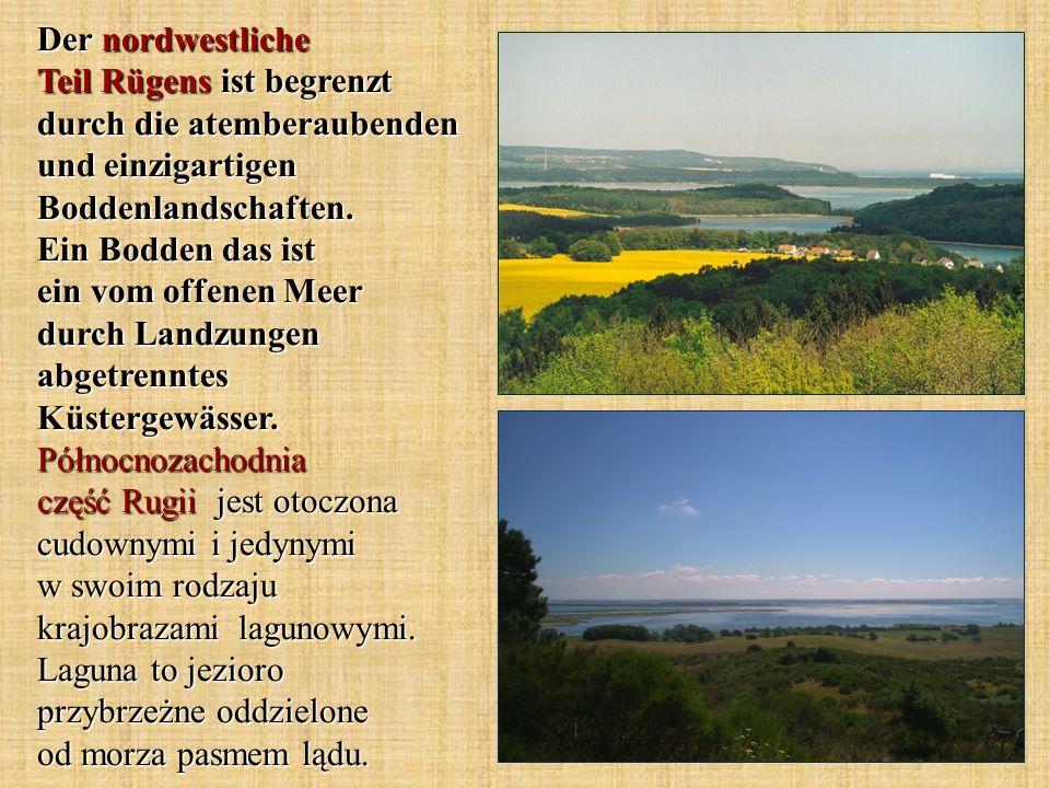 Der nordwestliche Teil Rügens ist begrenzt durch die atemberaubenden und einzigartigen Boddenlandschaften.
