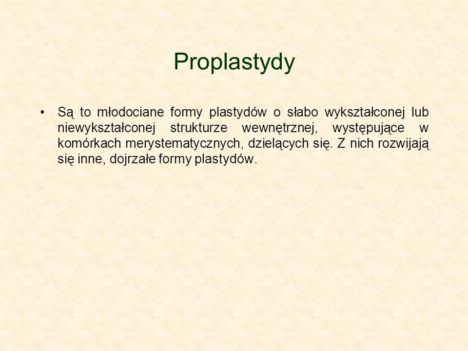 Proplastydy