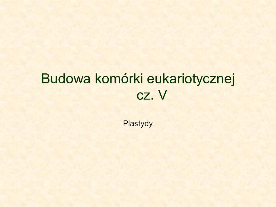 Budowa komórki eukariotycznej cz. V
