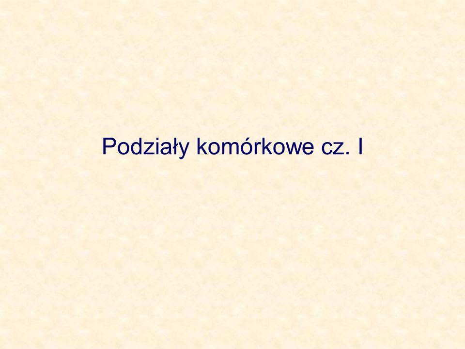 Podziały komórkowe cz. I