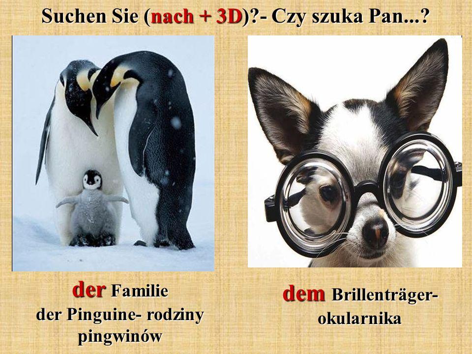 der Familie der Pinguine- rodziny pingwinów