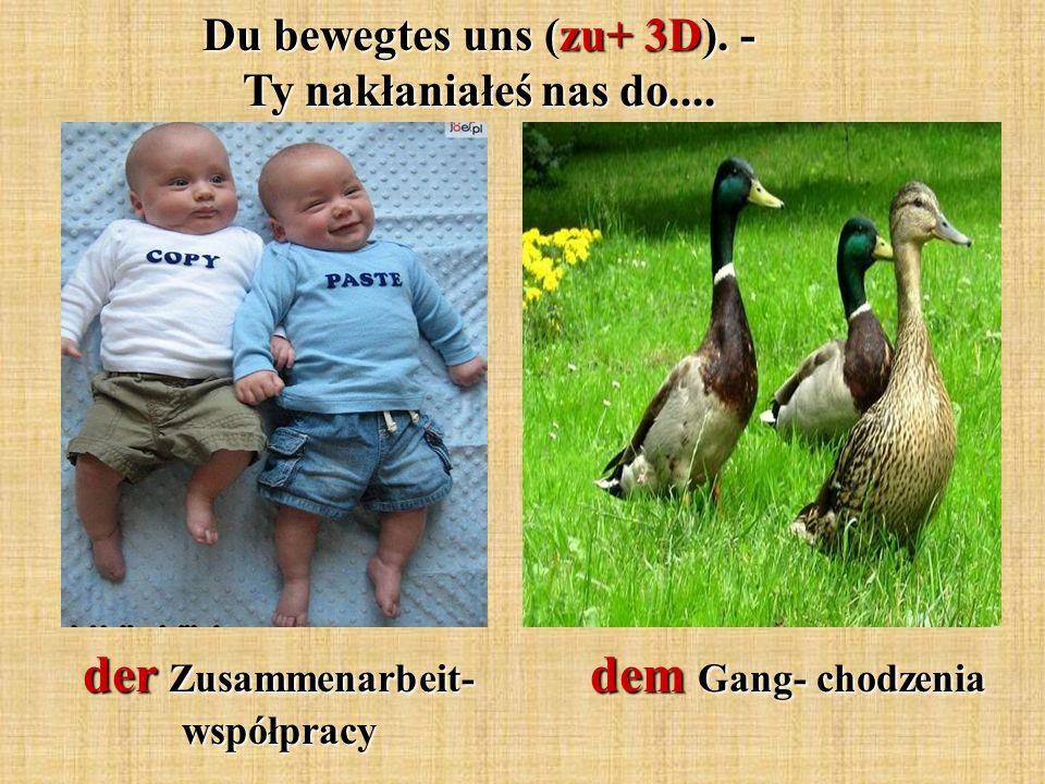 der Zusammenarbeit- współpracy dem Gang- chodzenia