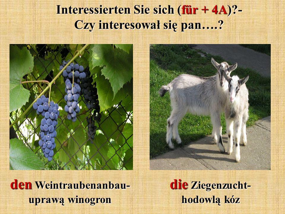die Ziegenzucht- hodowlą kóz