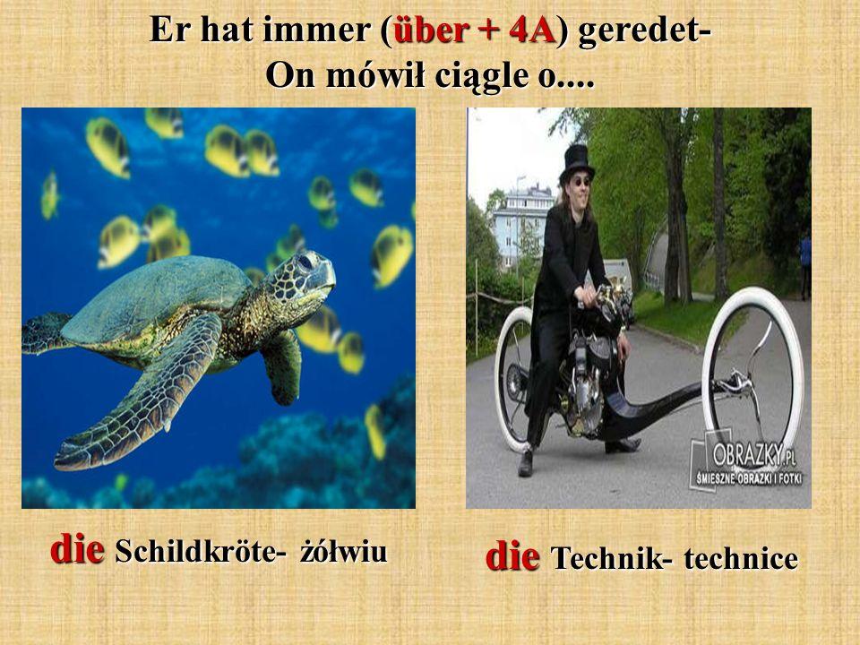 die Schildkröte- żółwiu die Technik- technice