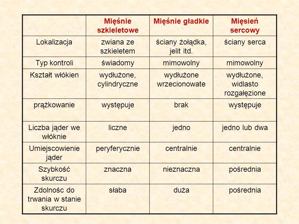 Mięśnie szkieletowe Mięśnie gładkie Mięsień sercowy