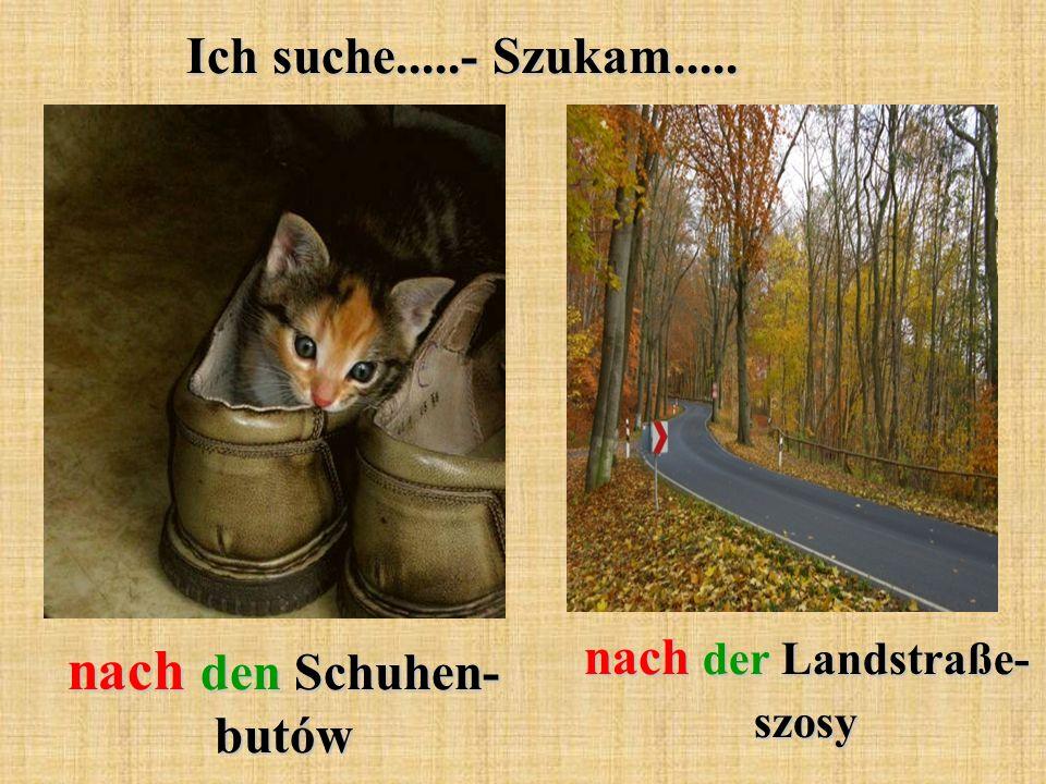 nach der Landstraße- szosy nach den Schuhen- butów
