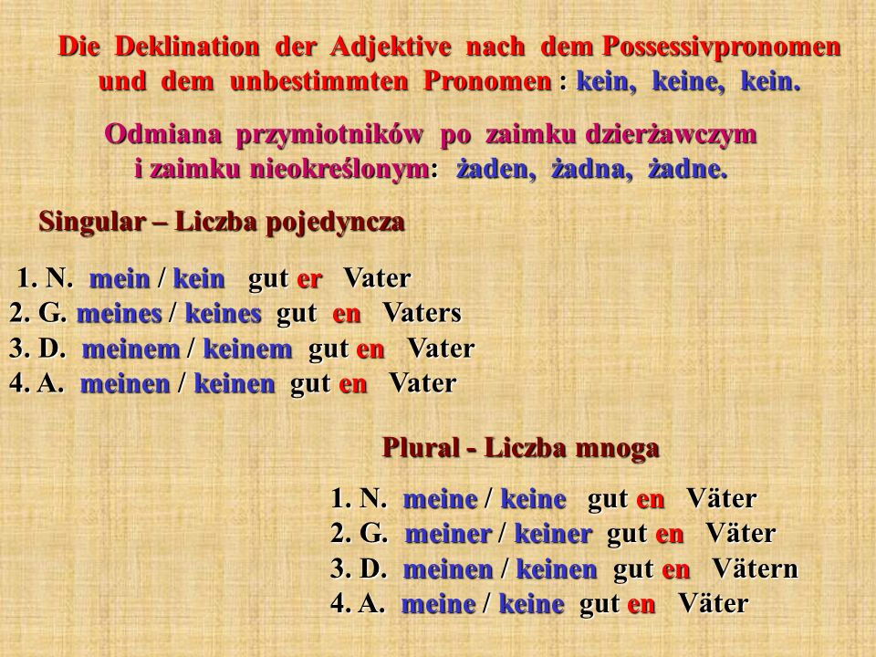 Die Deklination der Adjektive nach dem Possessivpronomen und dem unbestimmten Pronomen : kein, keine, kein.