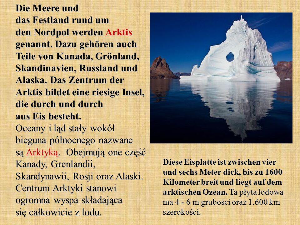 Die Meere und das Festland rund um den Nordpol werden Arktis genannt
