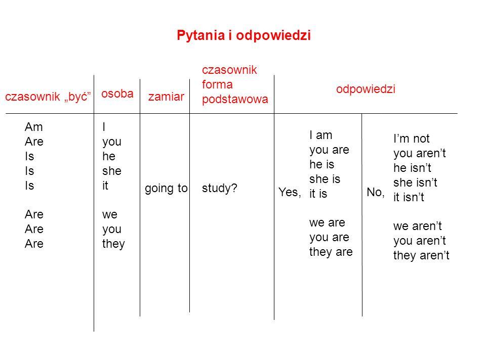 Pytania i odpowiedzi czasownik forma podstawowa odpowiedzi