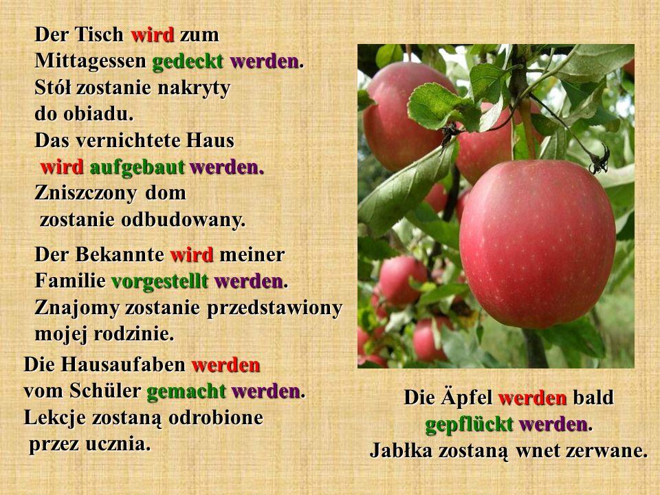 Die Äpfel werden bald gepflückt werden. Jabłka zostaną wnet zerwane.