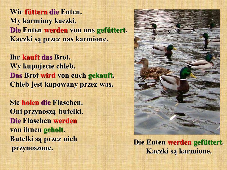 Die Enten werden gefüttert. Kaczki są karmione.