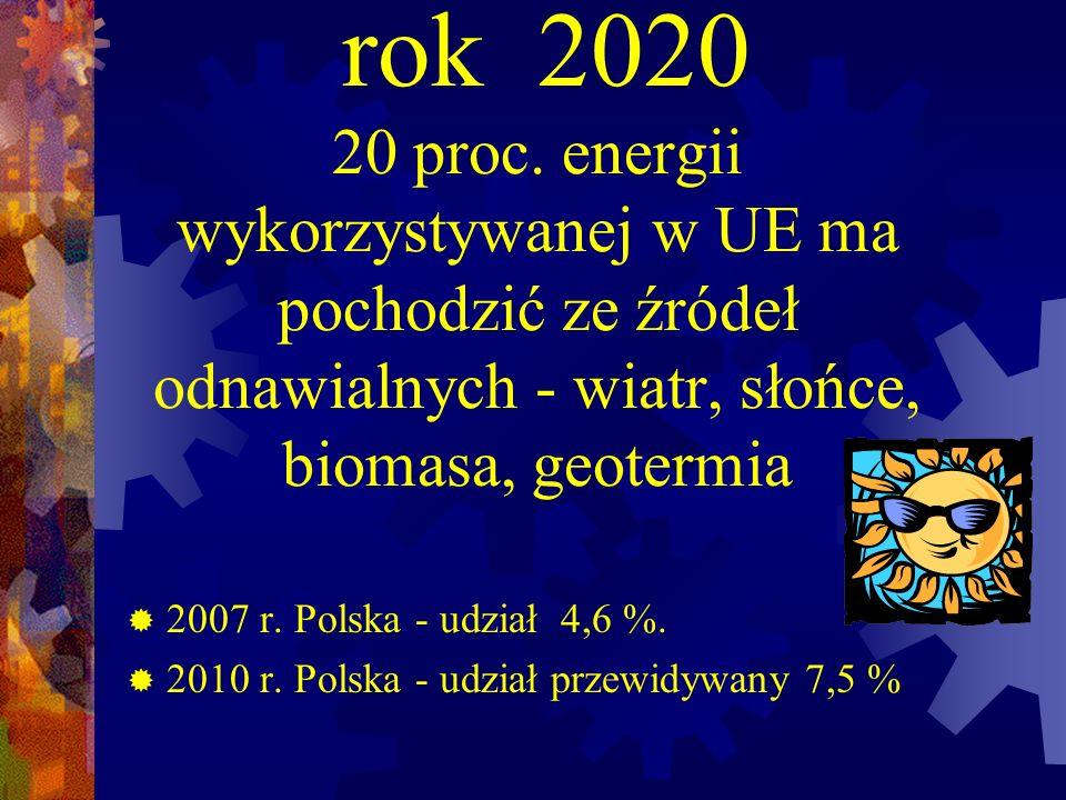 rok 2020 20 proc. energii wykorzystywanej w UE ma pochodzić ze źródeł odnawialnych - wiatr, słońce, biomasa, geotermia