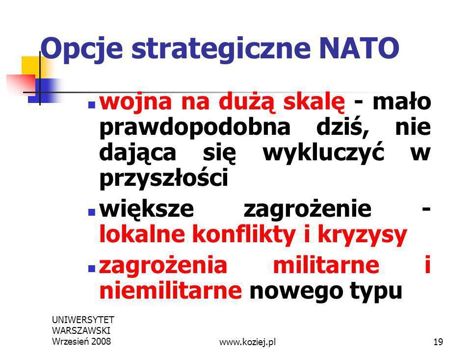 Opcje strategiczne NATO