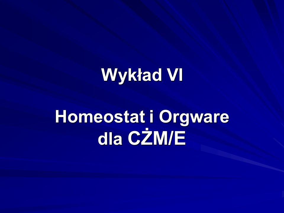 Wykład VI Homeostat i Orgware dla CŻM/E
