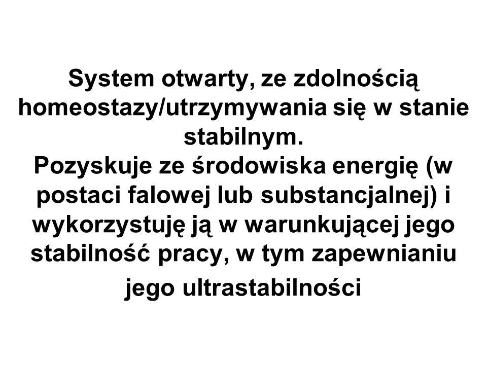 System otwarty, ze zdolnością homeostazy/utrzymywania się w stanie stabilnym.