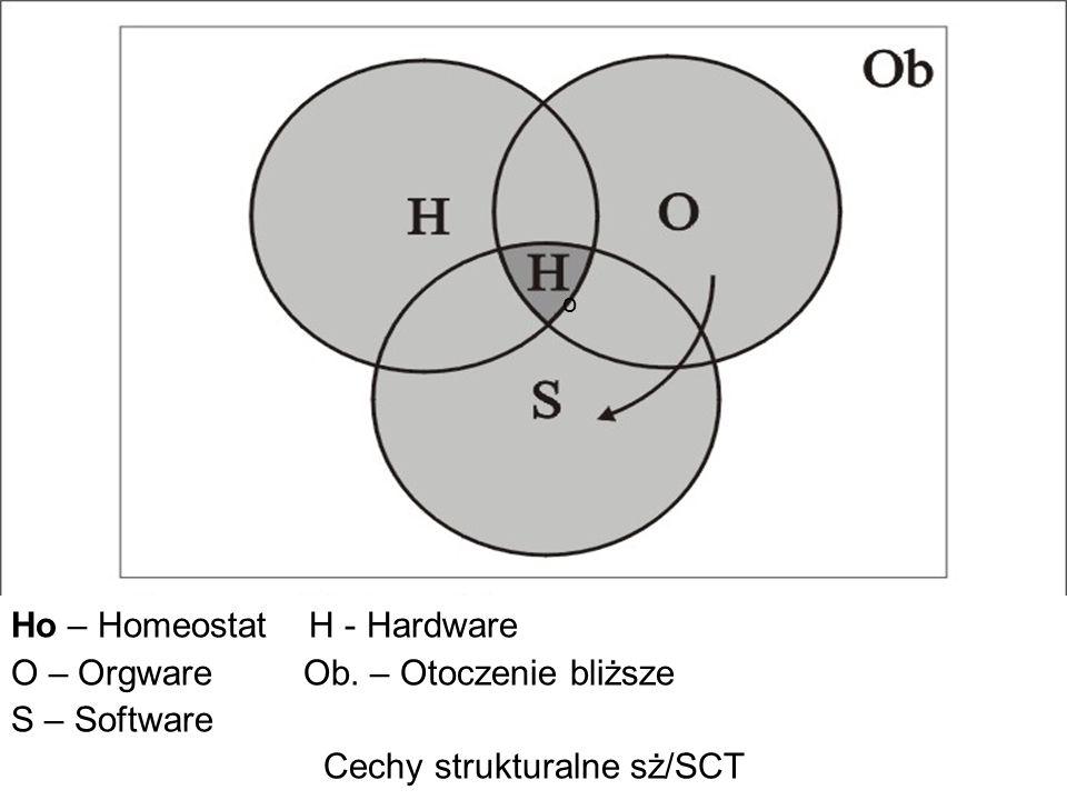Cechy strukturalne sż/SCT