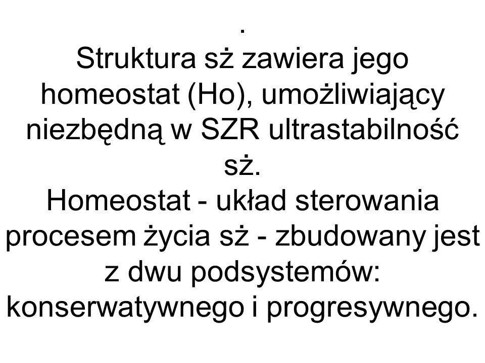 Struktura sż zawiera jego homeostat (Ho), umożliwiający niezbędną w SZR ultrastabilność sż.