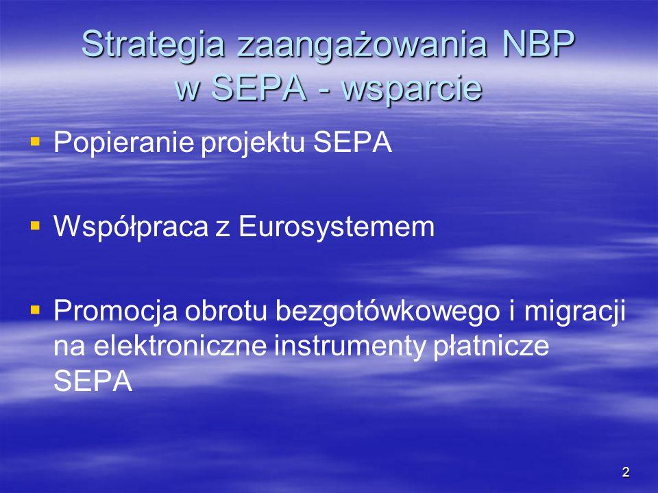 Strategia zaangażowania NBP w SEPA - wsparcie