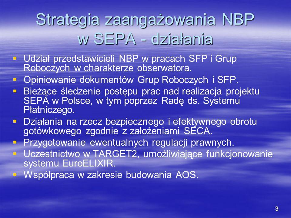 Strategia zaangażowania NBP w SEPA - działania