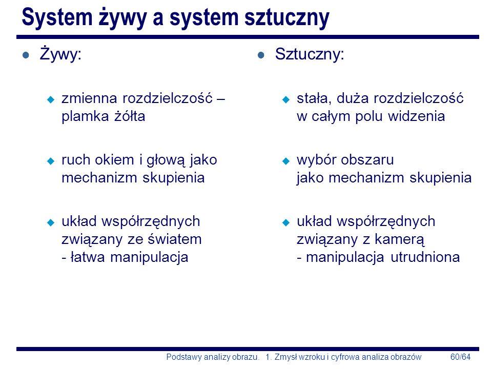 System żywy a system sztuczny