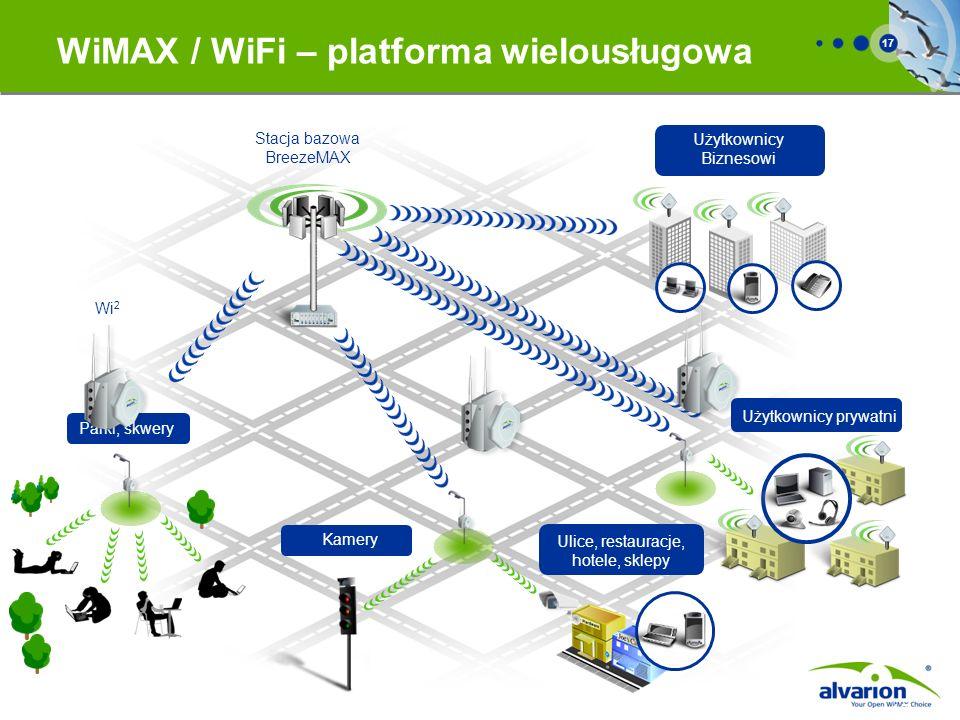 WiMAX / WiFi – platforma wielousługowa
