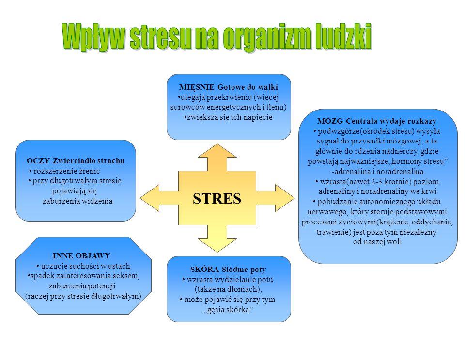Wpływ stresu na organizm ludzki
