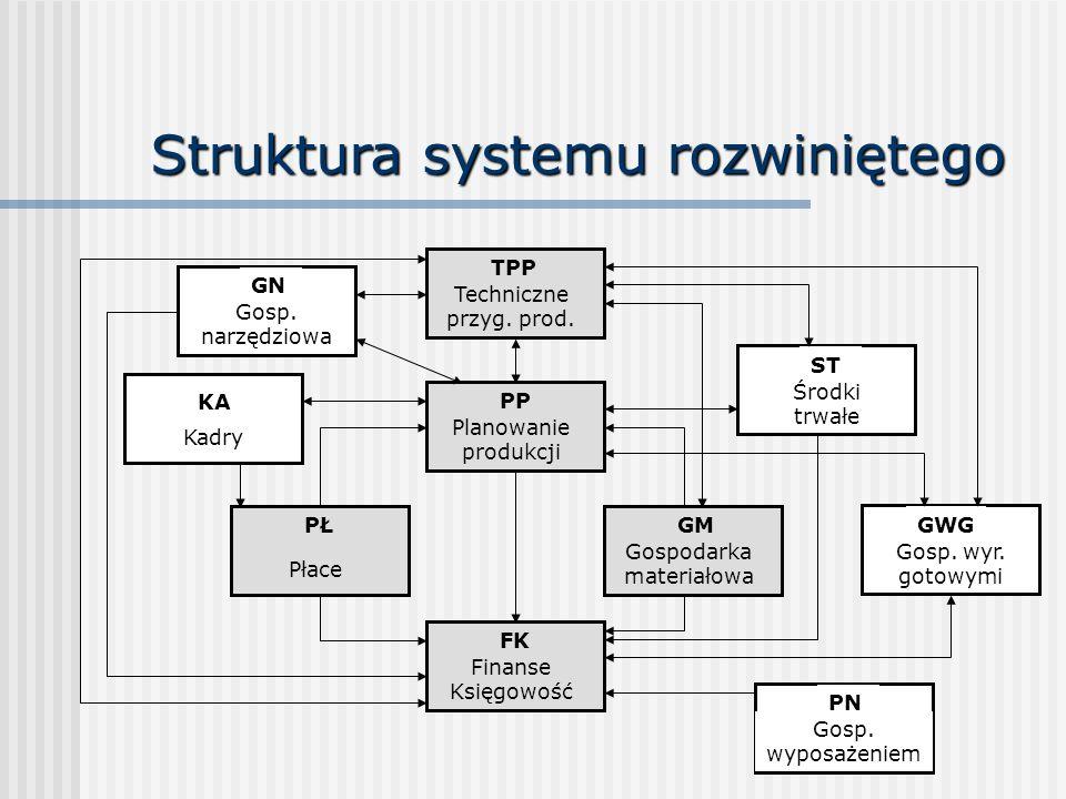 Struktura systemu rozwiniętego