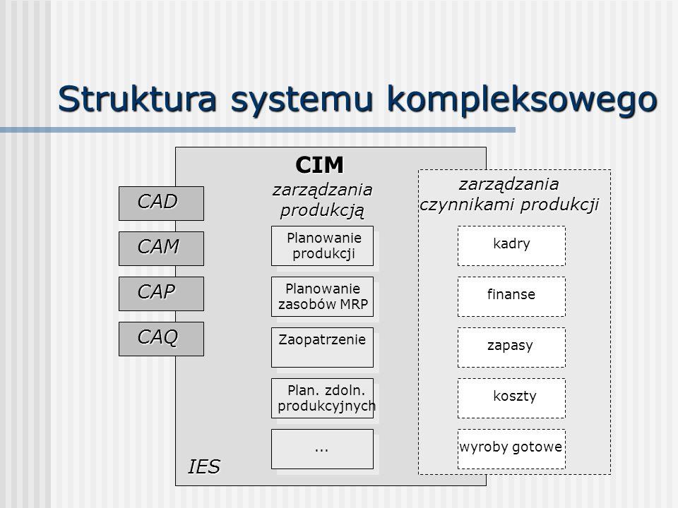 Struktura systemu kompleksowego