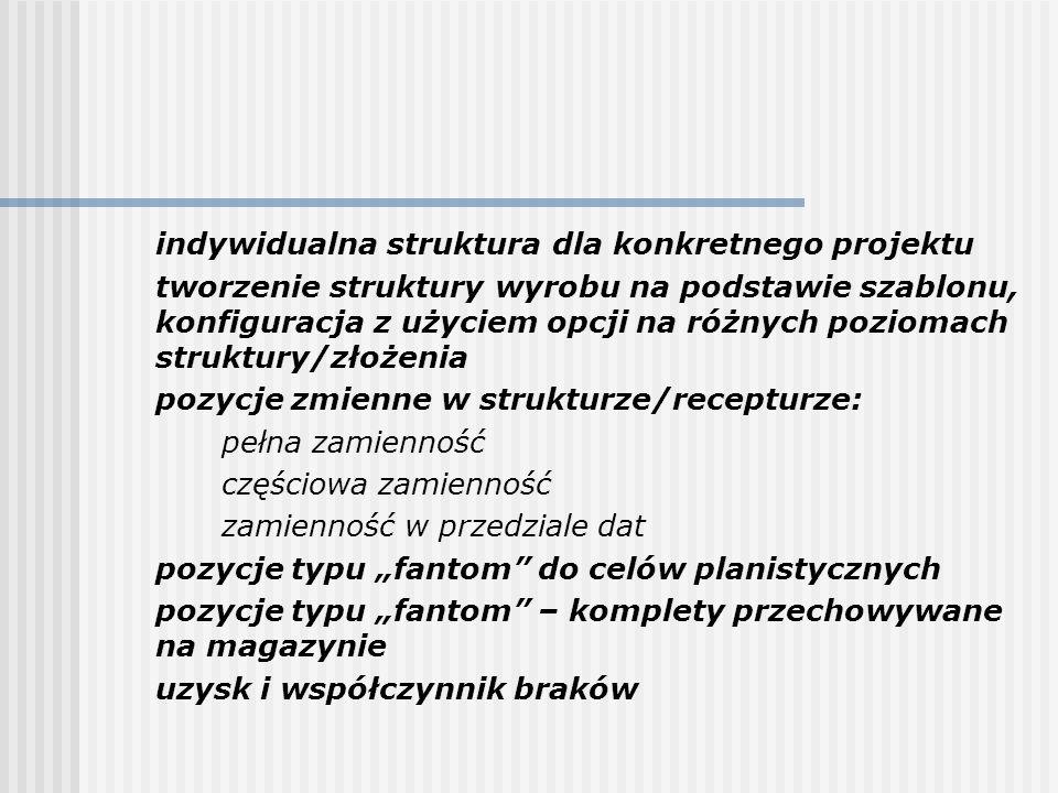indywidualna struktura dla konkretnego projektu