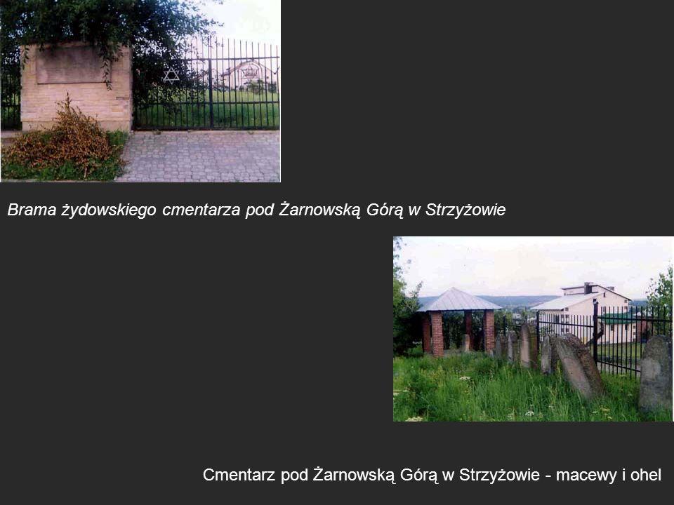 Brama żydowskiego cmentarza pod Żarnowską Górą w Strzyżowie