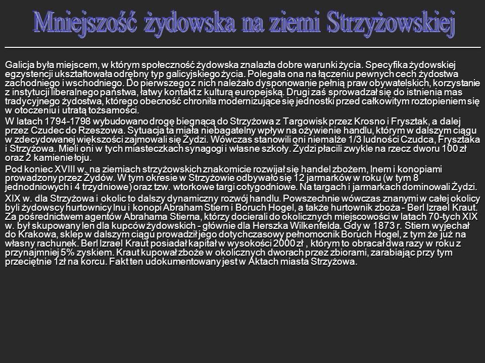 Mniejszość żydowska na ziemi Strzyżowskiej