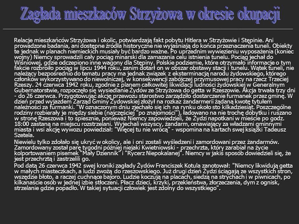 Zagłada mieszkaców Strzyżowa w okresie okupacji