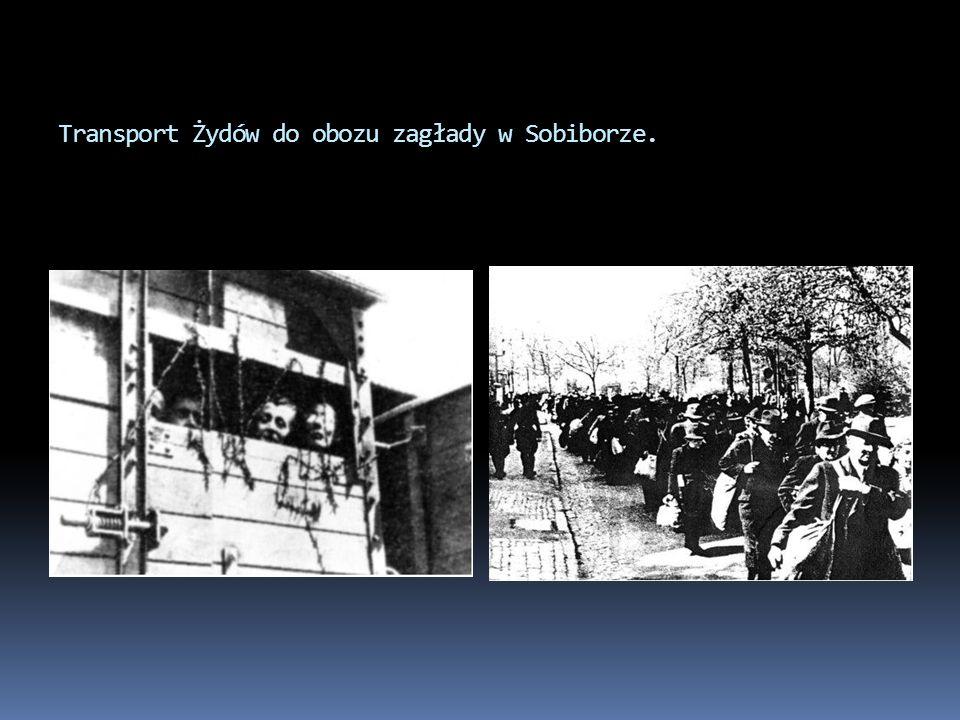 Transport Żydów do obozu zagłady w Sobiborze.