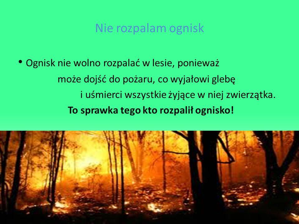 To sprawka tego kto rozpalił ognisko!