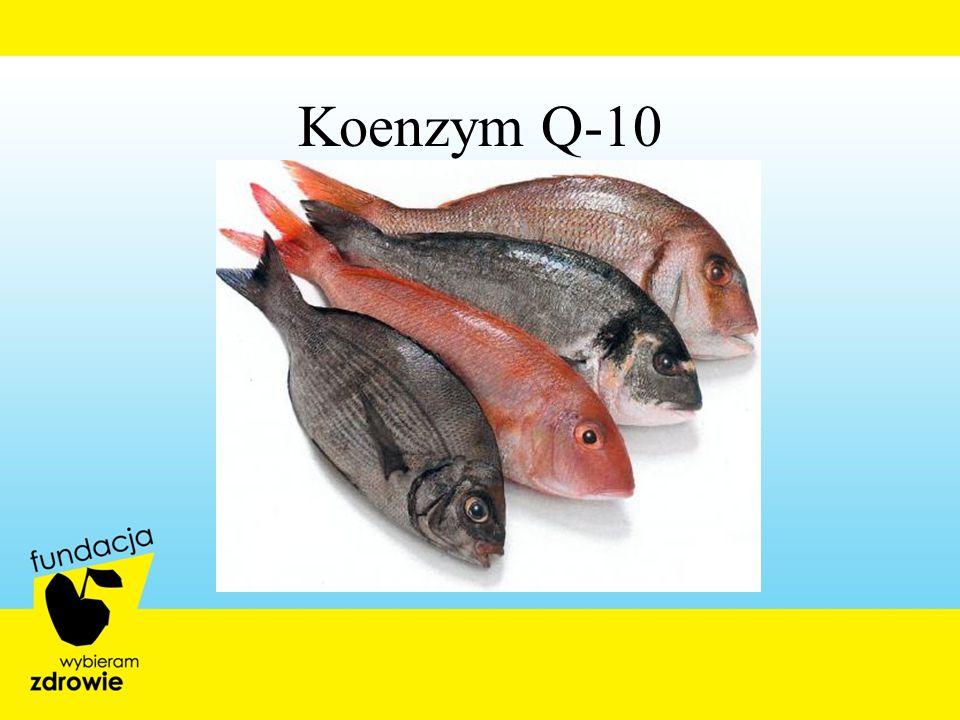 Koenzym Q-10 28
