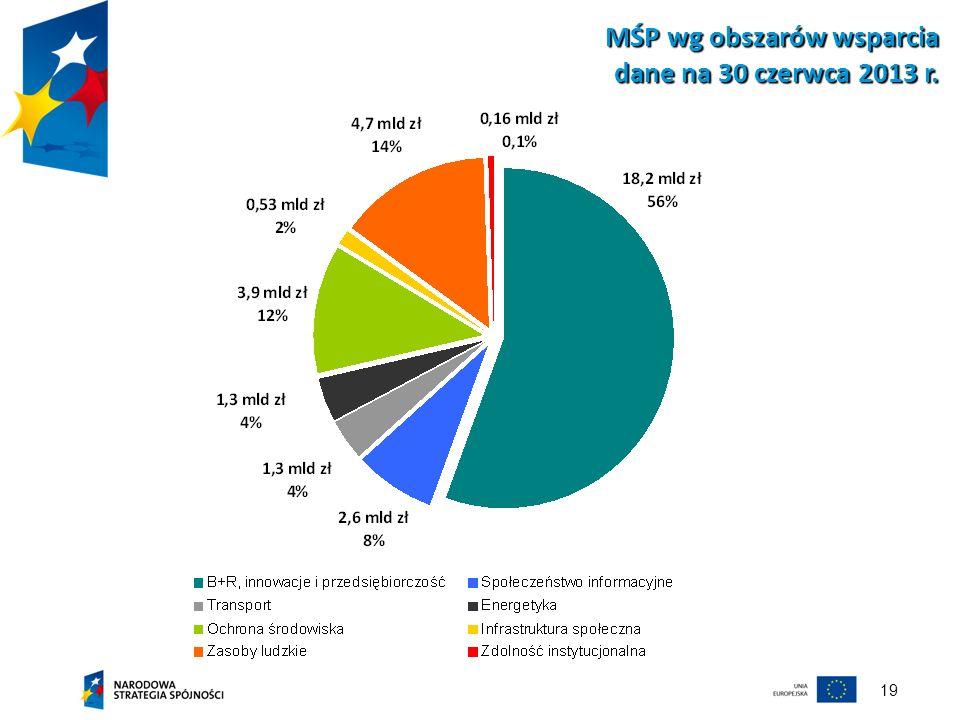 MŚP wg obszarów wsparcia dane na 30 czerwca 2013 r.