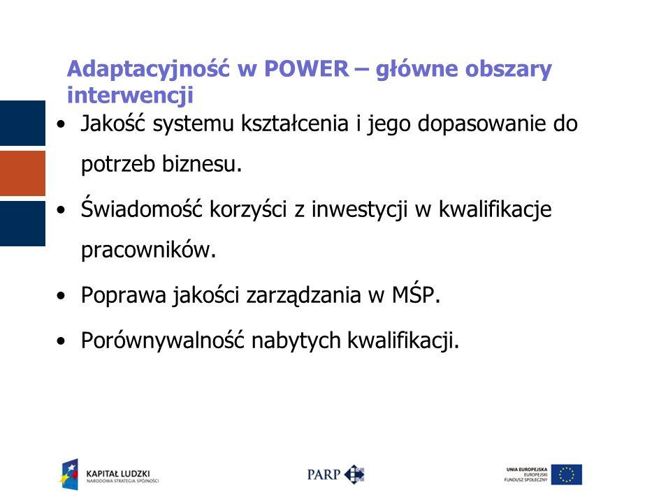 Adaptacyjność w POWER – główne obszary interwencji