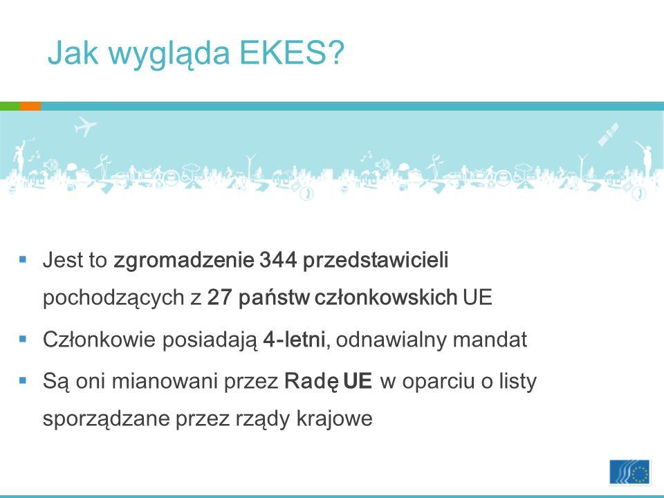 Jak wygląda EKES Jest to zgromadzenie 344 przedstawicieli pochodzących z 27 państw członkowskich UE.