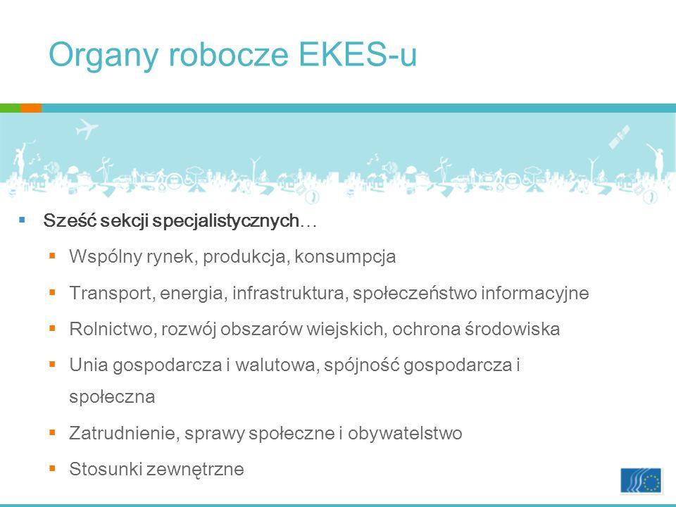 Organy robocze EKES-u Sześć sekcji specjalistycznych…