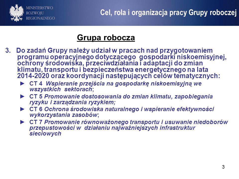 Grupa robocza Cel, rola i organizacja pracy Grupy roboczej