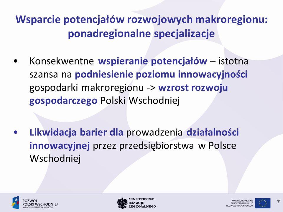 Wsparcie potencjałów rozwojowych makroregionu: ponadregionalne specjalizacje