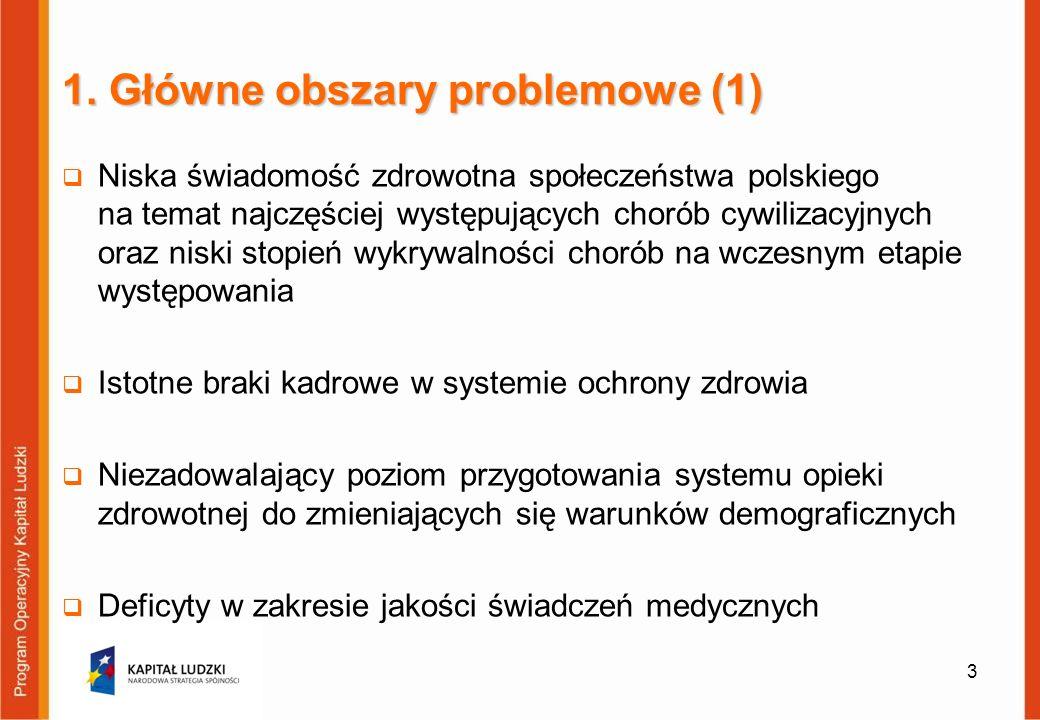 1. Główne obszary problemowe (1)