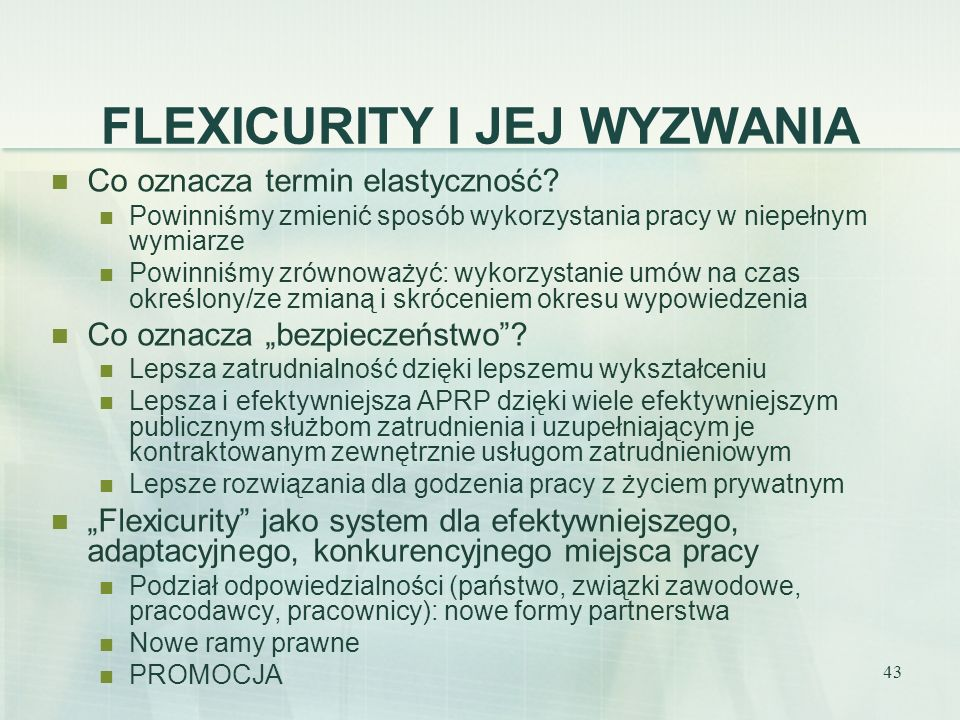 FLEXICURITY I JEJ WYZWANIA